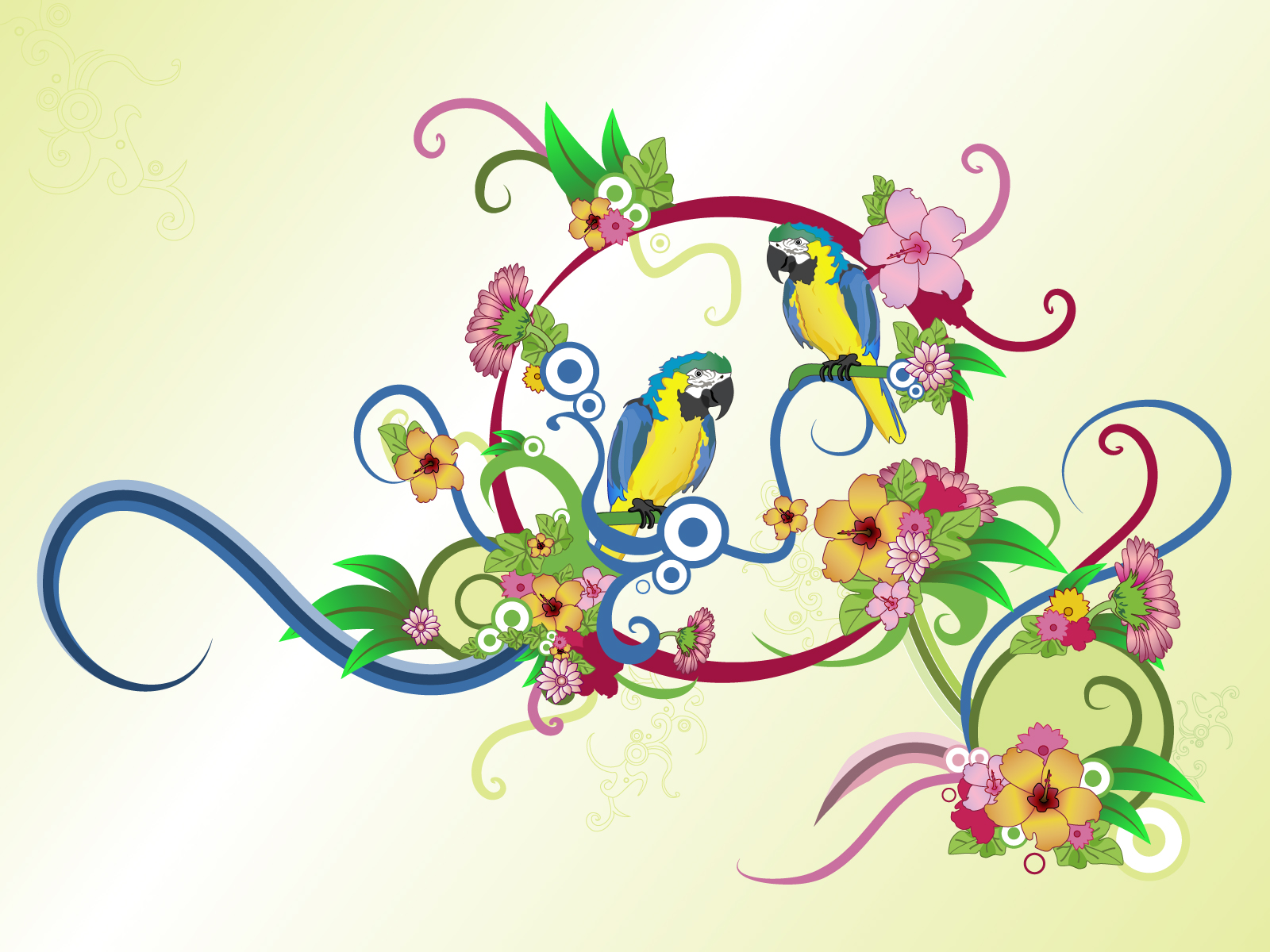 Art Desain Parrot Wallpapers Pets Cute And Docile