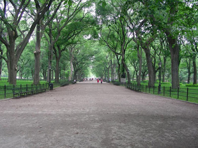 Central Park : Literary walk