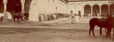 castello beltrami corte ducale