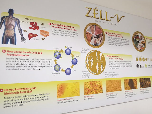 Zell-V First Skincare Range Launch In Singapore