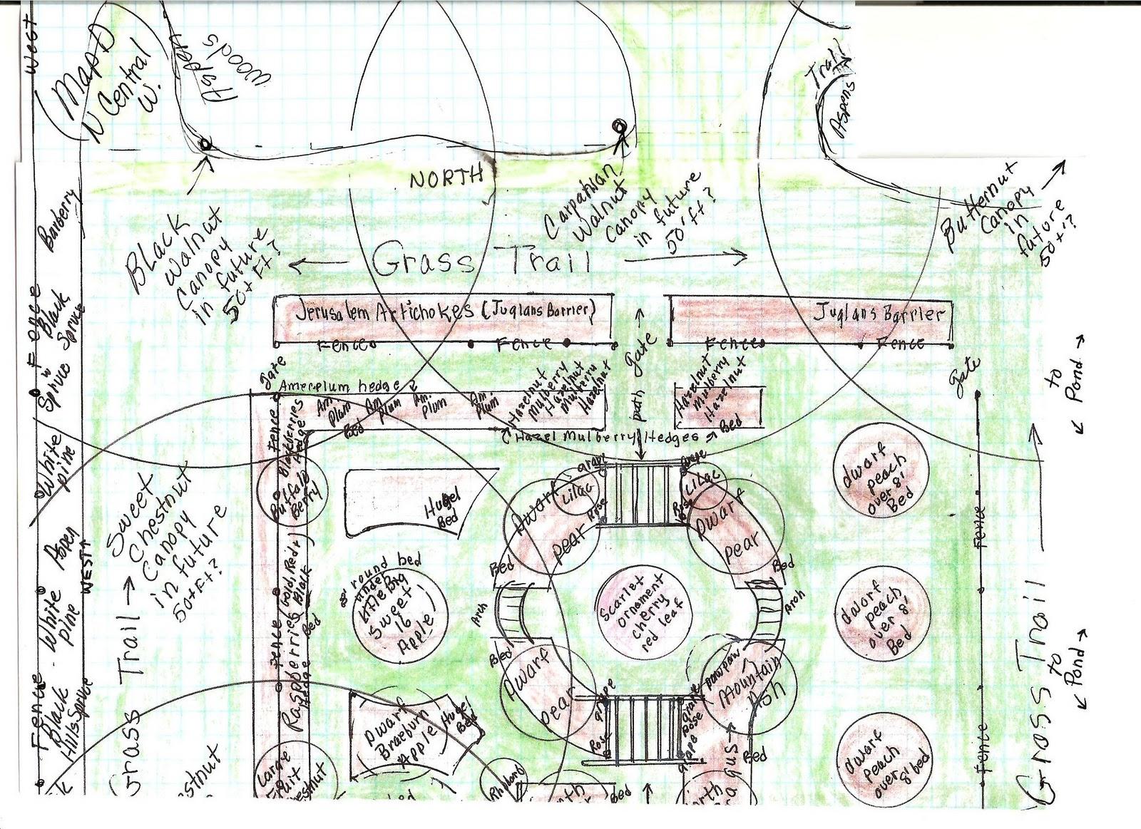restful trails food forest garden food forest gardens. Black Bedroom Furniture Sets. Home Design Ideas