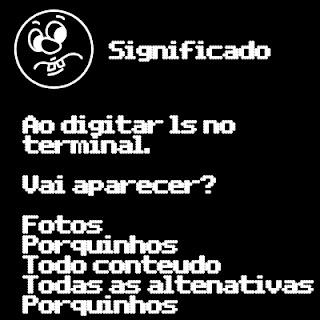 Digite Ls no terminal