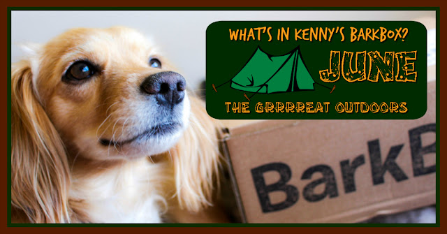 barkbox, subscription box, dog subscription, dog treats