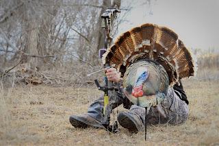 bow hunting decoy for turkey