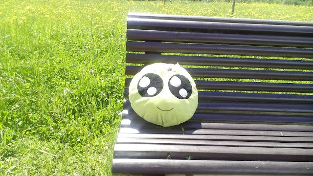 Mini-Fu meditando al sol