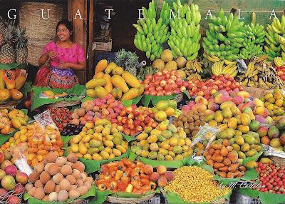 Guatemala fruit export