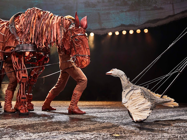 War Horse, New Theatre Oxford | Review