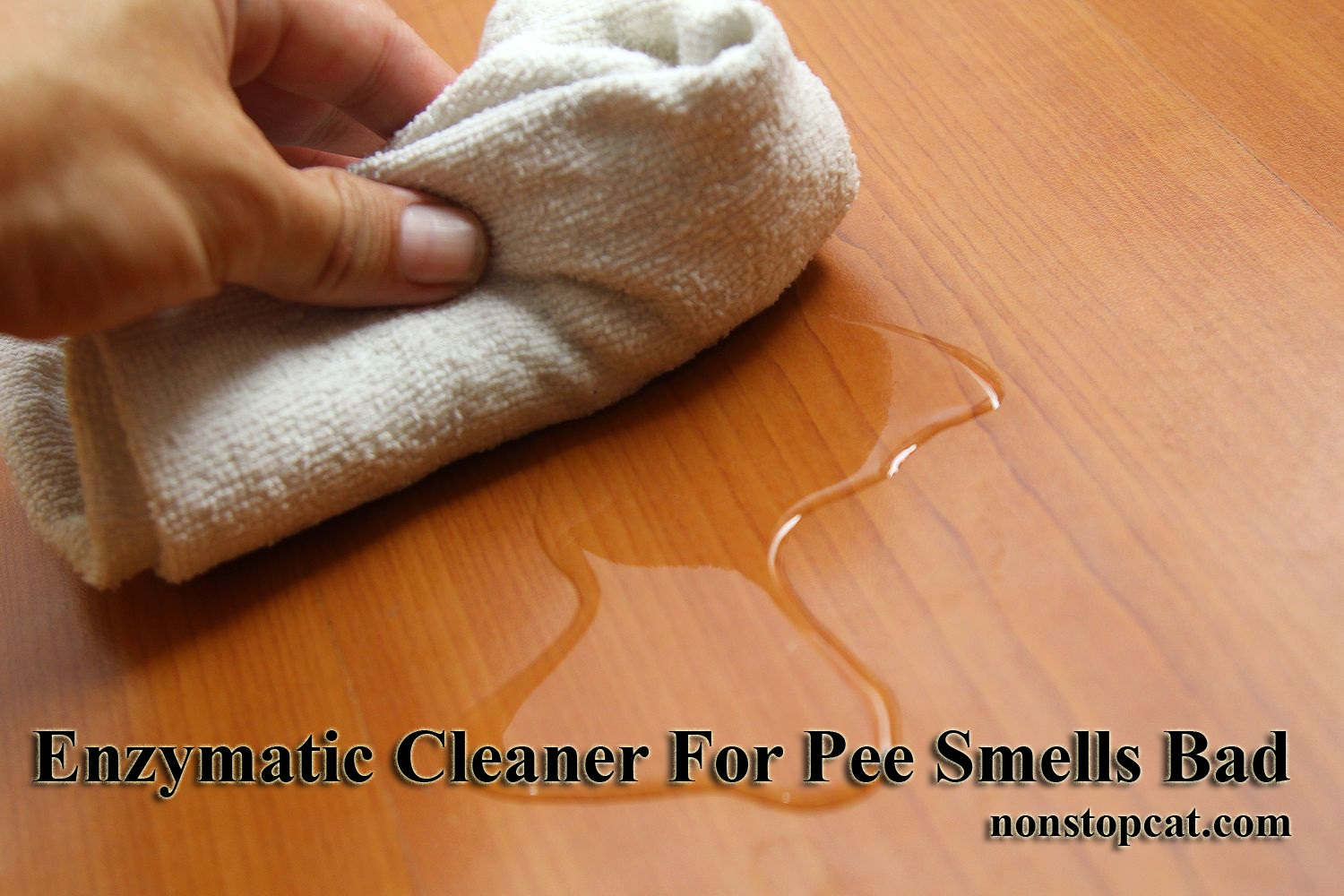 Enzymatic Cleaner For Pee Smells Bad