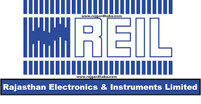 Rajasthan Electronics & Instruments Limited