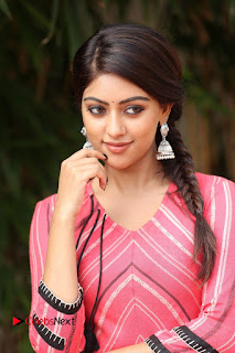 Actress Anu Emmanuel Pictures at Majnu Success Meet  0005.JPG