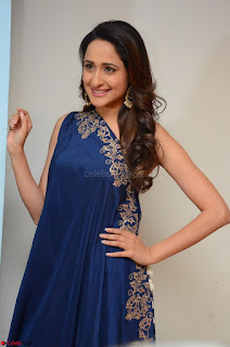 Pragya Jaiswal in beautiful Blue Gown Spicy Latest Pics February 2017 032.JPG