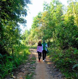 Jalan landai dan merata bikin semangat membara ke batu dinding Borneo