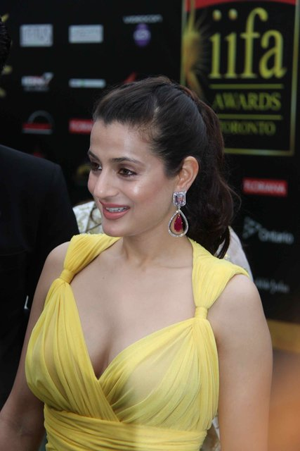 Amisha Patel Braless In Transparent Yellow  Nude Bollywood-9815