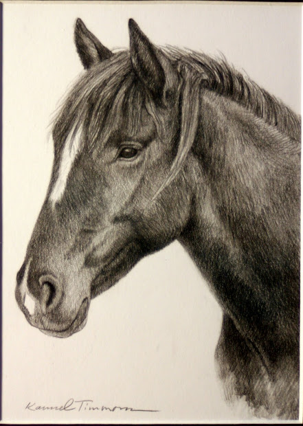 Karmel Timmons Pencil Drawing