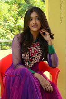 Actress Pooja Jhaveri Latest Stills in Purple Salwar Kameezt at Dwaraka Success Meet  0198.JPG