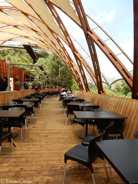 Things to do in New Zealand Waitomo Glowworm Caves