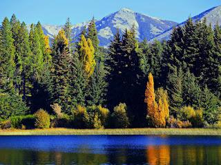 06 Parque Nacional Nahuel Huapi - Argentina