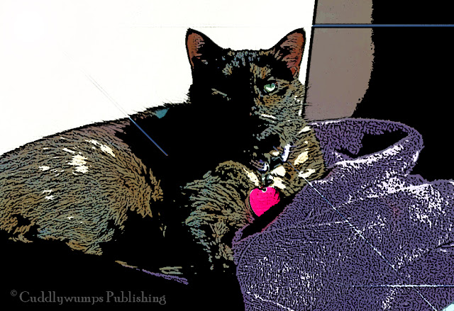 Real Cat Paisley in the Sun, posterized