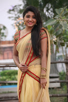 Tamil actress Aditi Menon half saree photos
