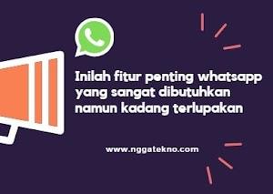 5 Fitur Penting Whatsapp Ini Sangat Dibutuhkan Namun Kadang Terlupakan