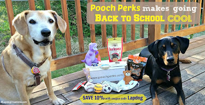 two rescue dogs with pooch perks box