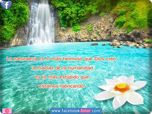 Frases De Amor Con Imagenes De Naturaleza: Imagenes Con Frases A La Naturaleza Etiquetar En Facebook