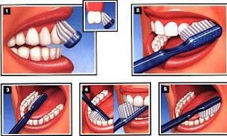 Diş fırçalaması