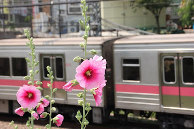Ini Dia Kiat-Kiat Agar Tetap Nyaman Naik Kereta Api Ekonomi