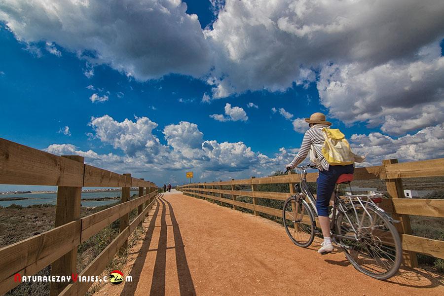 Sendero en Ría Formosa, Algarve