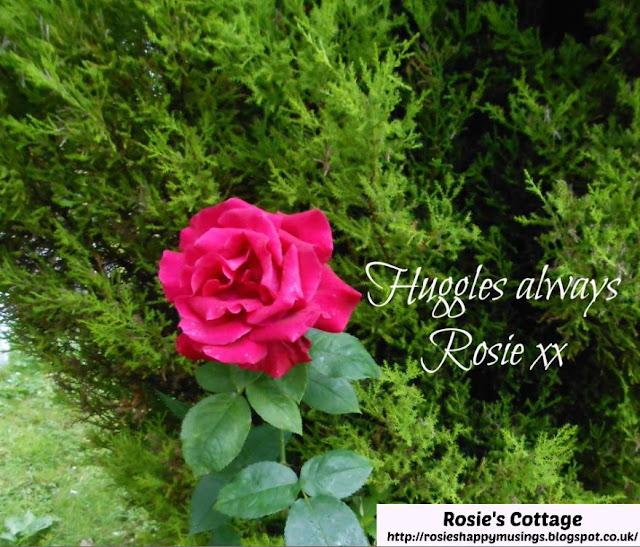 Huggles Always Honeys, Rosie xx
