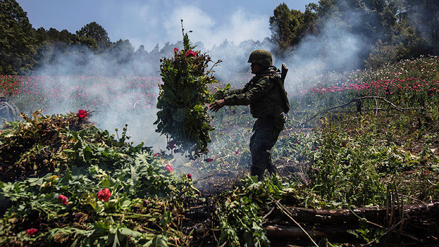 Este obispo negocia con los más feroces narcotraficantes de México