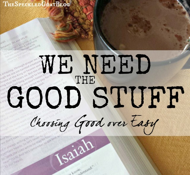 "We need the good stuff in our lives. But sometimes, it's hard to choose nourishment in the Word over the ""junk food"" of our culture."