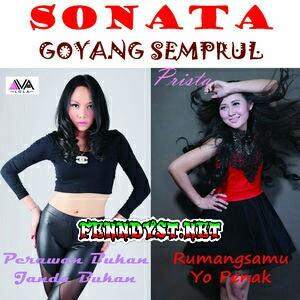 Sonata Goyang Semprul (2015) Album cover