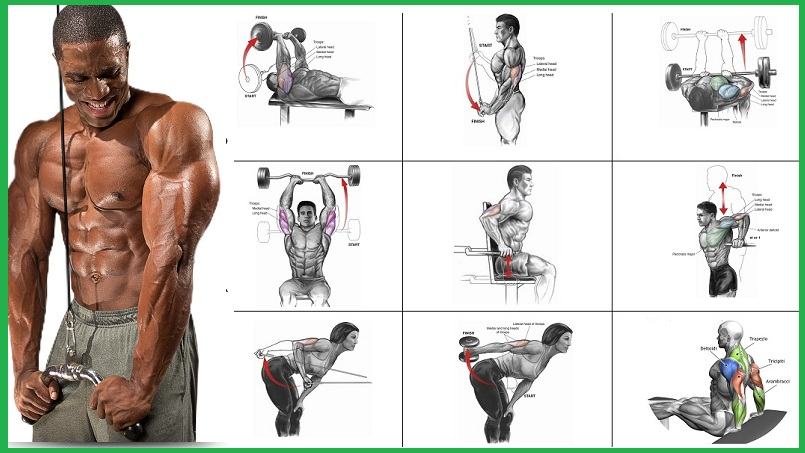 Tricep Workout - Specific Exercises That You Can Do To