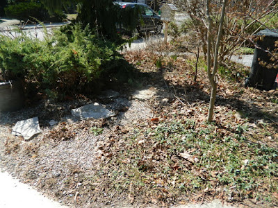Parkdale front garden spring cleanup before by Paul Jung Gardening Services Toronto