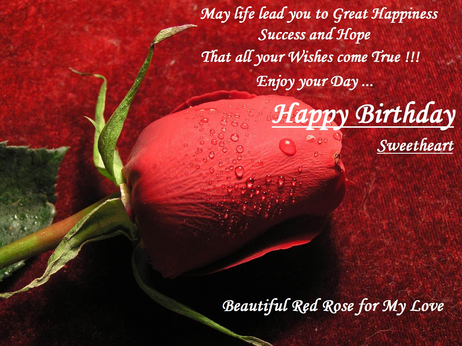 30 Best Happy Birthday Wishes