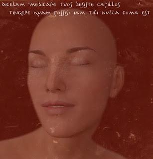 dicebam 'medicare tuos desiste capillos!' Ovidius Naso amores 1,14 comaaurora / Haarelassen im alten Rom