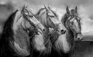 caballos-colombianos-finos-lapiz