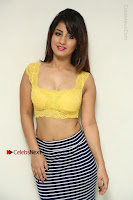 Cute Telugu Actress Shunaya Solanki High Definition Spicy Pos in Yellow Top and Skirt  0041.JPG