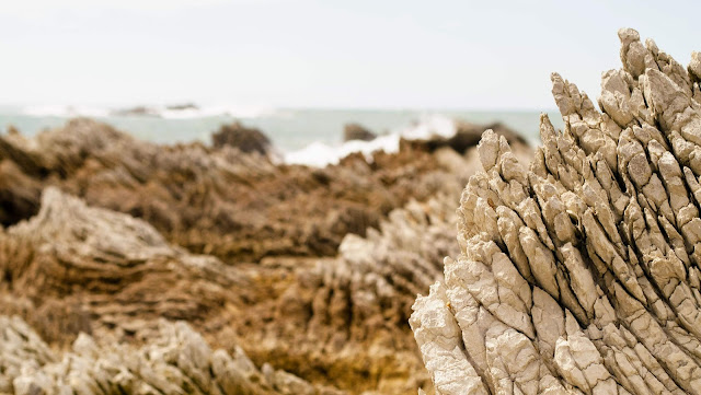 2 weeks in New Zealand: rocks at Kaikoura on the South Island