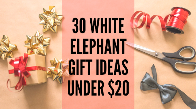 30 White Elephant Gift Ideas Under $25