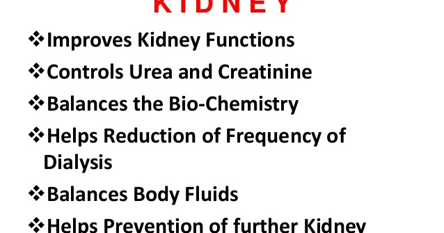 Proyoung Magic Ganoderma For Kidney