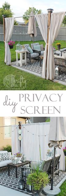 DIY隐私屏幕100美元