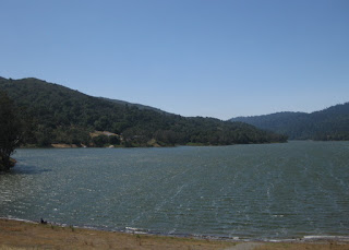 Wind-driven ripples and whitecaps on Lexington Reservoir, Los Gatos, California