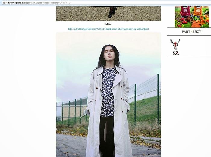 http://catwalkmagazine.pl/blogosfera/najlepsze-stylizacje-blogerow-24-11-1-12/