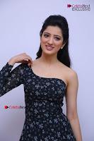 Telugu Actress Richa Panai Stills in One Shoulder Floral Long Dress at Rakshaka Bhatudu Movie Interview  0121.JPG