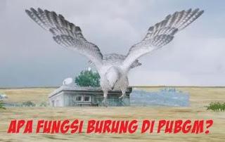 Apa Fungsi Burung di PUBG Mobile