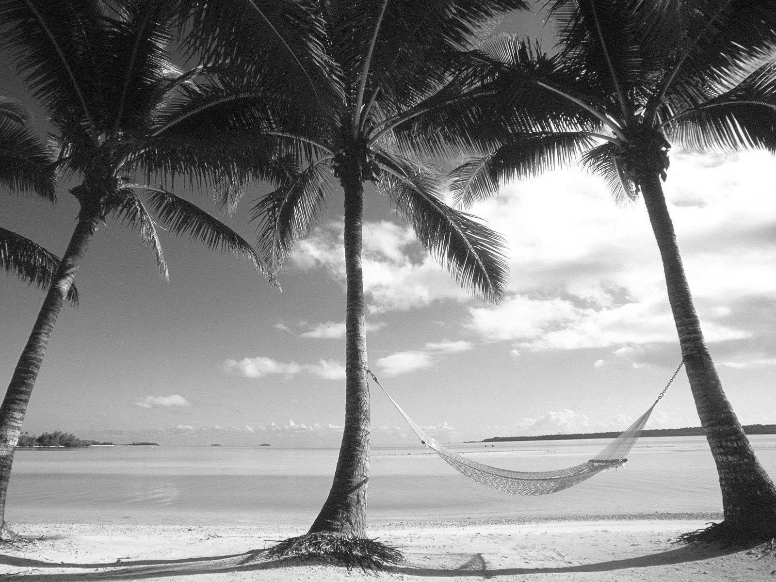 Black And White Wallpapers Black And White Beach -2401