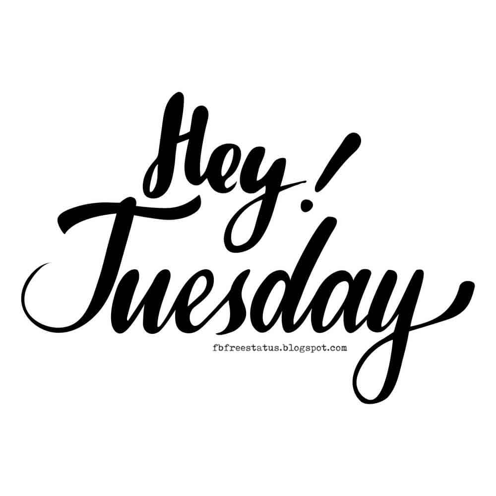 Hey Tuesday.