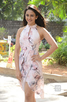 rakul preet singh khakee success meet 8.jpg